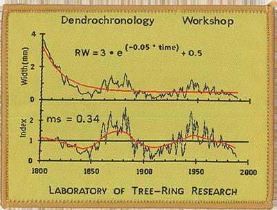 Dendro quantitative methods
